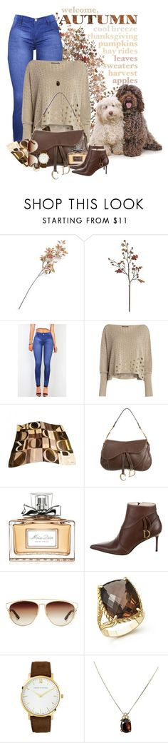 """Fall"" by sugerpop ❤ liked on Polyvore featuring Crate and Barrel, Sarah Pacini, Christian Dior, Bloomingdale's and Larsson & Jennings"