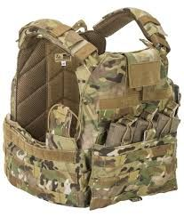 Image result for plate carriers