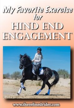 An Easy Exercise to Create Hind End Engagement - Get your horse to engage his hind end in just a few minutes. This easy exercise also wakes up a lazy horse and improves responsiveness. Horse Training Tips, Horse Tips, Riding Hats, Horse Riding, Riding Clothes, Trail Riding, Riding Outfits, Horse Horse, Andalusian Horse