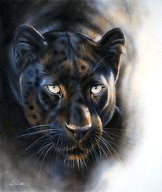 Sandi Baker - Art (Page of Black Panther Cat, Black Panther Tattoo, Big Cats Art, Cat Art, Animal Sketches, Animal Drawings, Beautiful Cats, Animals Beautiful, Jaguar Animal