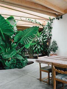 Tinas Lounge | Architecture // Inspiration | Pinterest | Leben ... Garten Pavillon Tropische Pflanzen