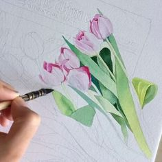 Tulips    Do you love tulips ?  #worldofartists #sydney #instaart #instadraw  #instartist #art #print #artist #watercolour #illustrator #illustration #sketch #draw #draweveryday #drawing #artwork  #inspiring_watercolors #global_artist #art_gallery #art_we_inspire #sketch_daily #artdiscover#kalachevaschool#waterblog #flowerillustration #australianart #kidsroom#art_spotlight#tulips