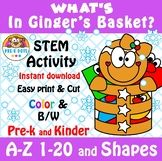 What's in Ginger's Basket? STEM Christmas Activity Preschool and Kinder