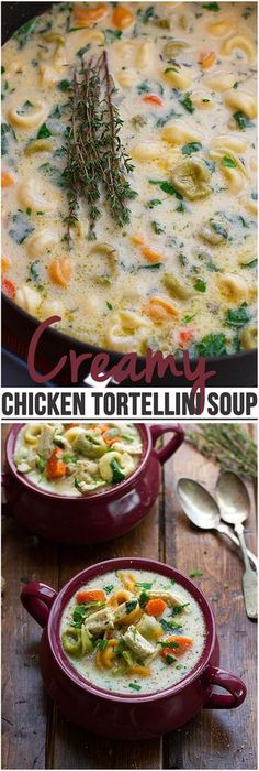 This soup is the perfect comfort food. Similar to a creamy chicken noodle soup but with tortellini instead! This soup is fall perfect! | http://Littlespicejar.com #fallrecipes #soup #chickennoodlesoup
