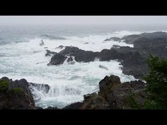 Rain sounds and ocean waves crashing on rocks with distant thunders, relaxing deep sleep sound, ambient nature sounds for meditation and relaxation. Playlist...