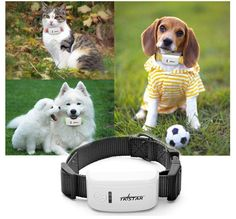 Mini Waterproof GSM / GPRS / GPS Strap Tracker for Pet Cat / Dog / Pig - White + Black - From 79,= for Euro 50,55