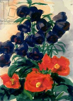 Hare-Bells and Poppies (w/c on paper) / Emil Nolde