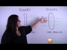 Konvexa och konkava linser (Fysik) - Studi.se