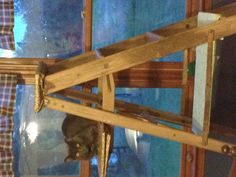 An old ladder turned into a kitty condo. Cover with carpet on steps, leading to shelf over slider door?