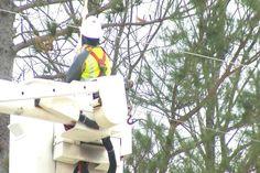 Northern Michigan Crews Work Through The Holiday To Restore Powe - Northern Michigan's News Leader