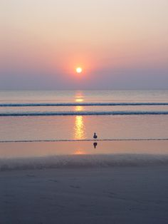 Daytona Beach Florida Shore Ocean Sunrise. The 3 of us sat on beach & watched the sunrise.  One of the most beautiful moments of my life. :)