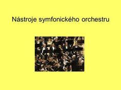 Nástroje symfonického orchestru. Smyčcové nástroje housle viola violoncello…