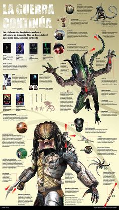 http://infografiasos.files.wordpress.com/2008/11/aliens-vs-depredador.jpg
