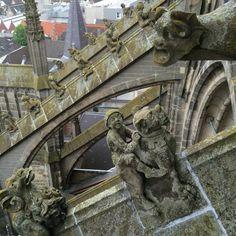 29 mei 2016 - Een wonderlijke klim. Lopen over het dak van de Sint Jan in Den Bosch