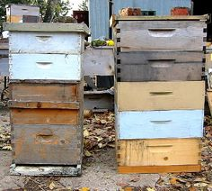 Permaculture Beekeping with Michael Bush Raising Bees, Permaculture Design, Birds And The Bees, Farm Gardens, Bees Knees, Bee Keeping, Sustainable Living, Dream Garden, Farm Life