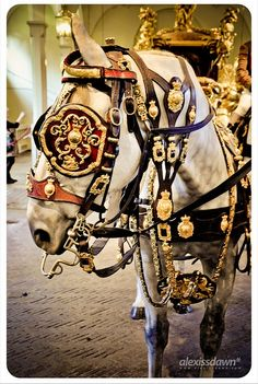 The Gold State Coach at the Royal Mews, London