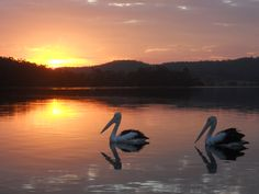 Sunset at Lake Corunna/Narooma/NSW/Australia
