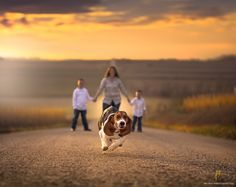 Photograph Daisy by Jake Olson Studios on 500px