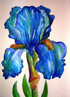 MOTHER'S DAY IRIS @ Louise Christian  I painted this card for my Mom who will be 93 in June.  She and I share a love of Iris, and between us, we probably had close to 200 varieties in our gardens in the past.    I tried to come close to one of the colors we had that was a favorite, using Watercolor & Ink.