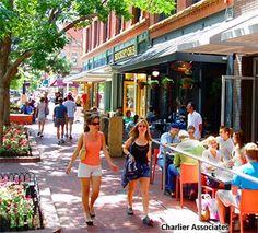 A side-walk cafe on a tree-lined street. Bistro Restaurant, Cafe Bistro, Transportation Solutions, New Urbanism, Hermosa Beach, Tree Line, The Neighbourhood, Side Walk, Bistros