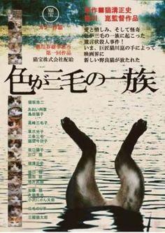 [活動報告]【今日のネコ活】大好きな目羅さんのポストカードについて その1 -クラウドファンディングきびだんご