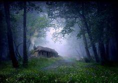 Forest Cottage, Isle of Ulva, Scotland   photo via arlene