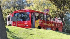 Red Bus Wine Tour - Cape Town area