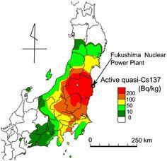 学術雑誌「ネイチャー」が公表した日本の放射能汚染の実態