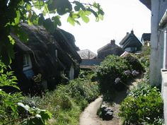 Cadgwith Cove Alley