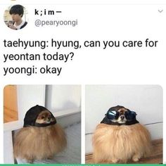 I'm a big fan of memes. I love memes I'm a big … # Fan-Fiction # amreading # books # wattpad Namjoon, Hoseok, Seokjin, Bts Memes Hilarious, Bts Funny Videos, Jimin, Bts Taehyung, Yoongi Bts, Magazine Cosmopolitan