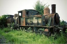 Ghost Train from 37 Images Of The Eerily Beautiful Way Nature Reclaims What We Abandon