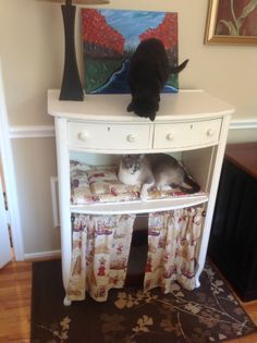 My new cat condo. This is a dresser repurposed into a cat condo, litter box disguise. This was an old chest of drawers, all drawers removed except the top one. Only the middle shelf was saved and a cat bed put on it, completed the look with tension rod with cute curtain to hide the litter box. - Created by Fabulous Finds of Denton.