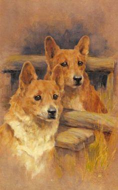 Wardle, Arthur - Two Corgies