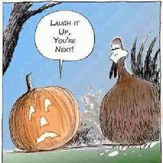 It's time for Thanksgiving jokes. Here is the collection of some funny thanksgiving pictures. It's also the time for Thanksgiving cards invitations so maybe Halloween Cartoons, Halloween Fun, Halloween Humor, Halloween Tricks, Halloween Signs, Vintage Halloween, Funny Halloween Quotes, Halloween Costumes, Dia De