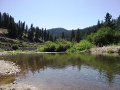 Idaho City RD - Grimes Creek: Wow Grimes is my maiden name - Cool