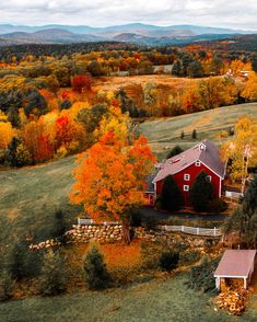FALL PRINT SALE! For 2 weeks only, I'm selling 10 of my favorite New England fall images & I will sign and number every single one. Own fall 2017 forever.