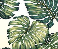 """Monstera Leaf Fabric - Tropical Upholstery Green Leaf All Over, Hawaiian, Perfect for Furniture Bedding Decorative Pillows, 57""""Wide, HCV9079"""