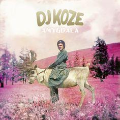 DJ Koze - Amygdala | DJBROADCAST