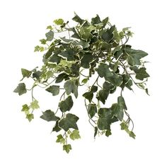 19'' Light ivy gala hanging bush Green Plants, Artificial Plants, Houseplants, Ivy, Decoration, Herbs, Products, Style, Decor