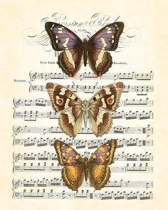 Цветные бабочки на нотных страницах.. Комментарии : LiveInternet - Российский…