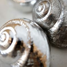 Silver spray painted shells.  i am really excited to do this to the hawaii shells i have collected.