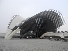 The TGV train station near the Saint-Exupery airport in Lyon-France. A beautifull giant bird in a foggy atmosphere. Architect : Santiago Calatrava.