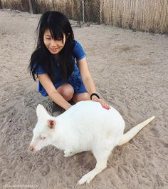 We had such an amazing time at Roos n More Zoo, which is an hour drive outside Las Vegas. We got to hold and cuddle with so many exotic animals!