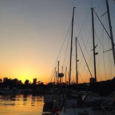 夢の島マリーナの夕日①