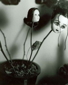 Halloween heads?