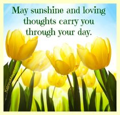 May sunshine and loving thoughts carry you through your day.