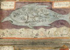 Adriaen Coenen's Fish Book (1580)