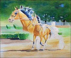 watersolublecoloredpencilhorse7-carrielewis