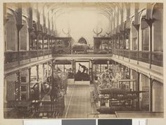 Interior of the National Museum in Melbourne,Victoria in the 1880s. •State Library of Victoria•   🌹