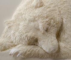 Calvin Nicholls : l'homme qui sculpte des animaux en papier